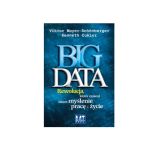 big-data-recenzja-827x400