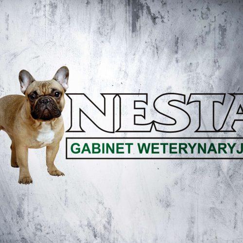 Nesta_logo
